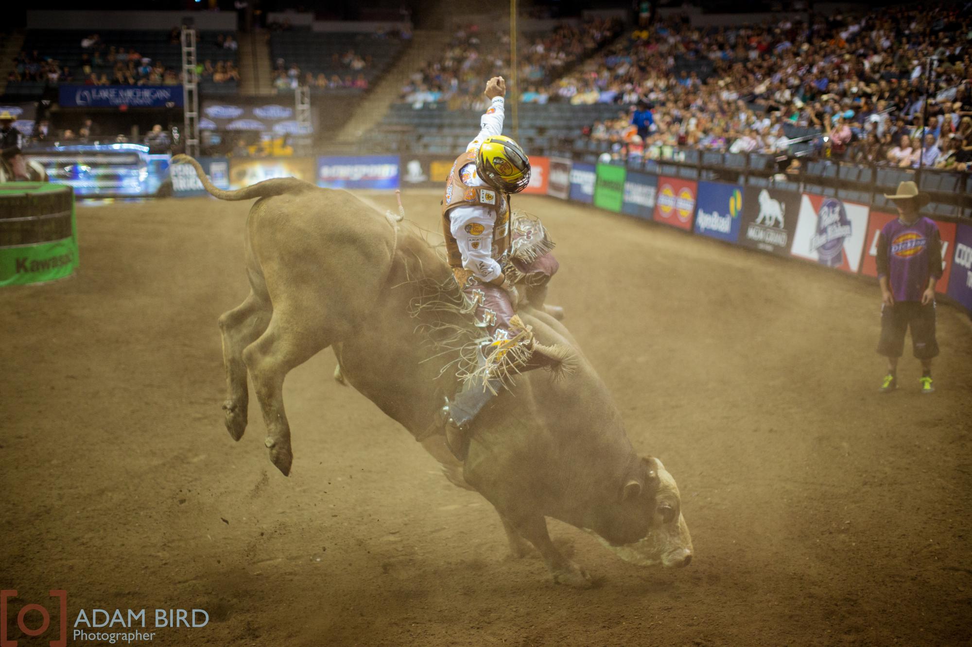 bull_rider_05.JPG