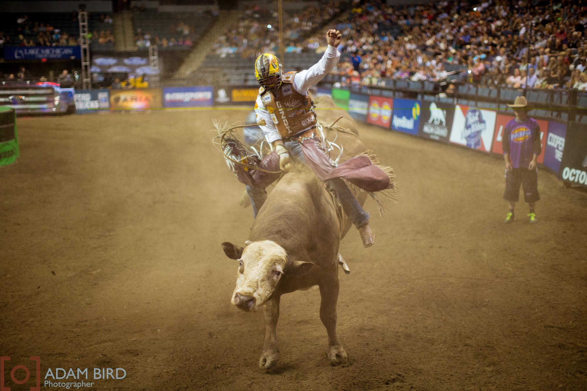bull_rider_06.JPG