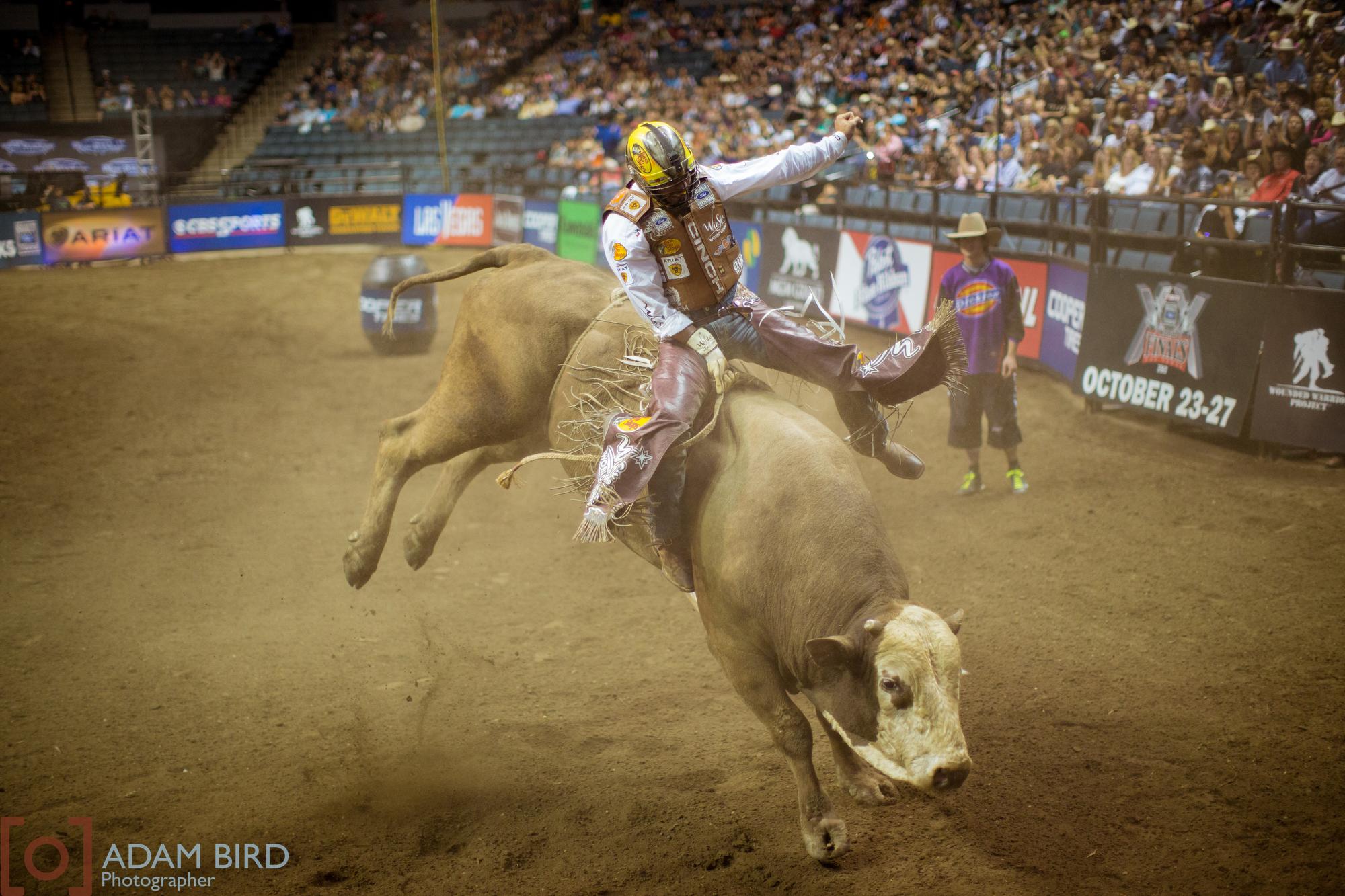 bull_rider_07.JPG