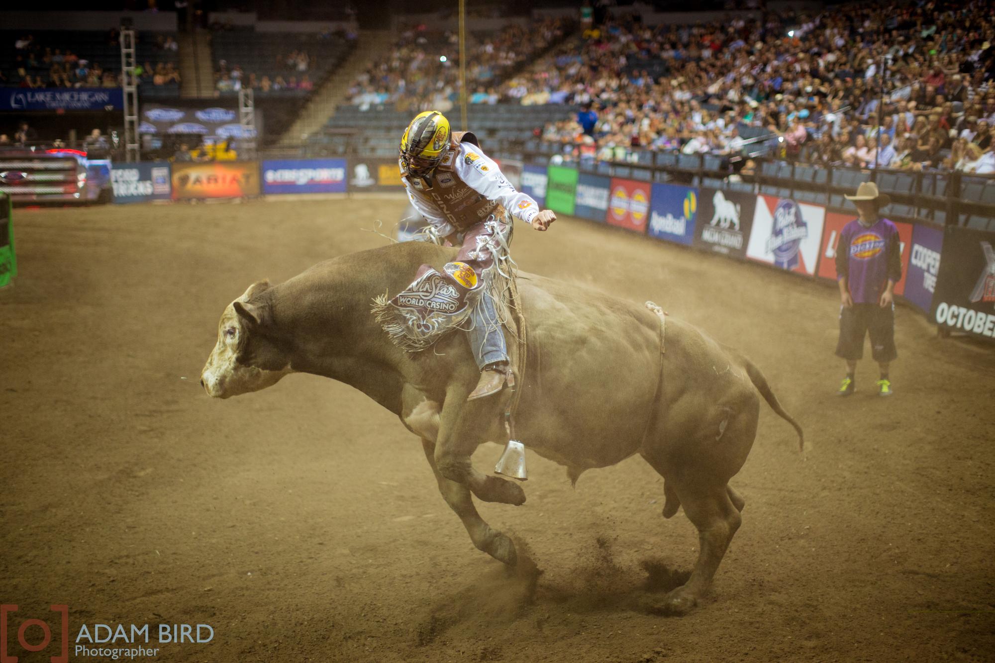 bull_rider_14.JPG