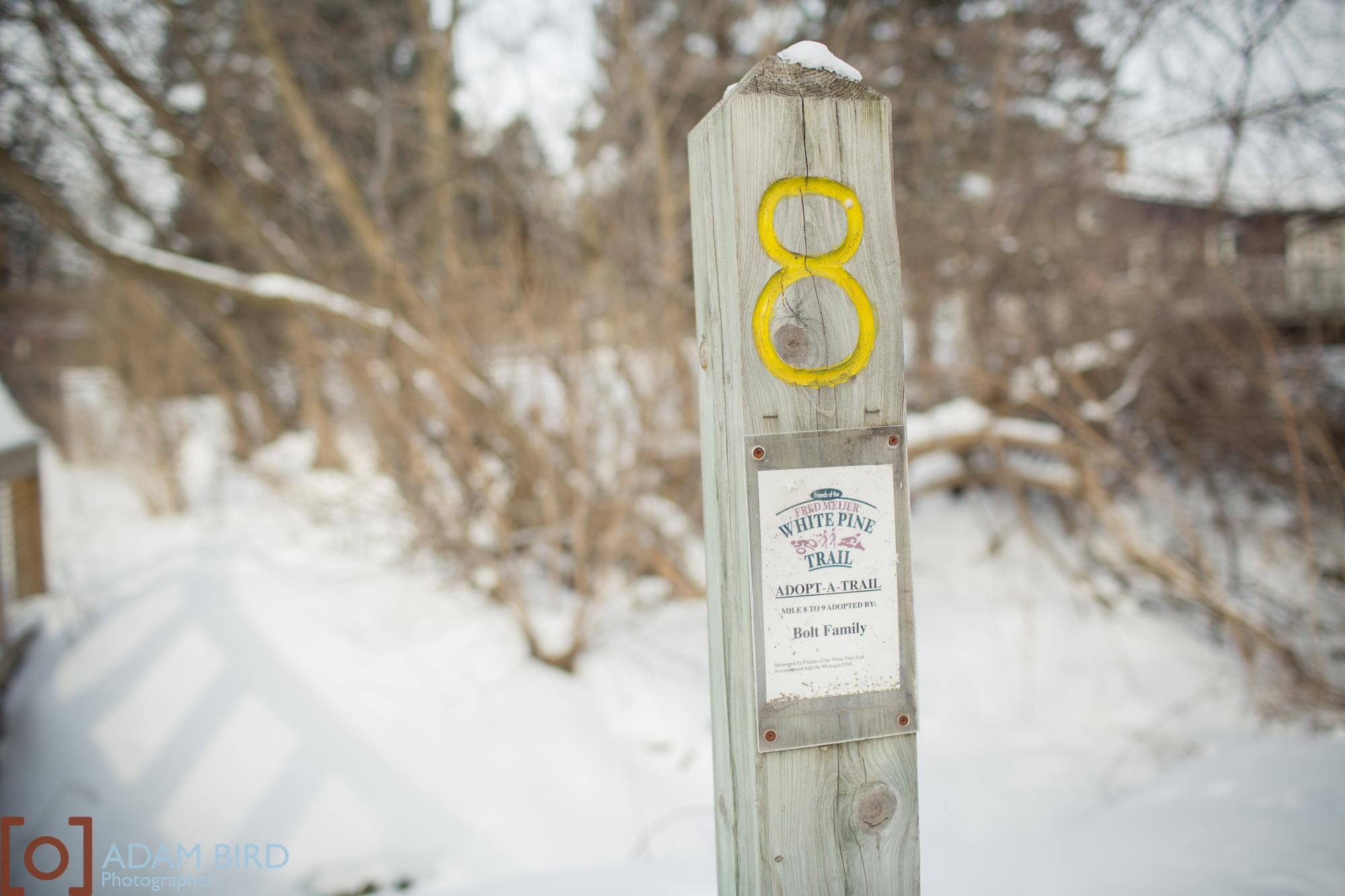 trails_blog290.JPG