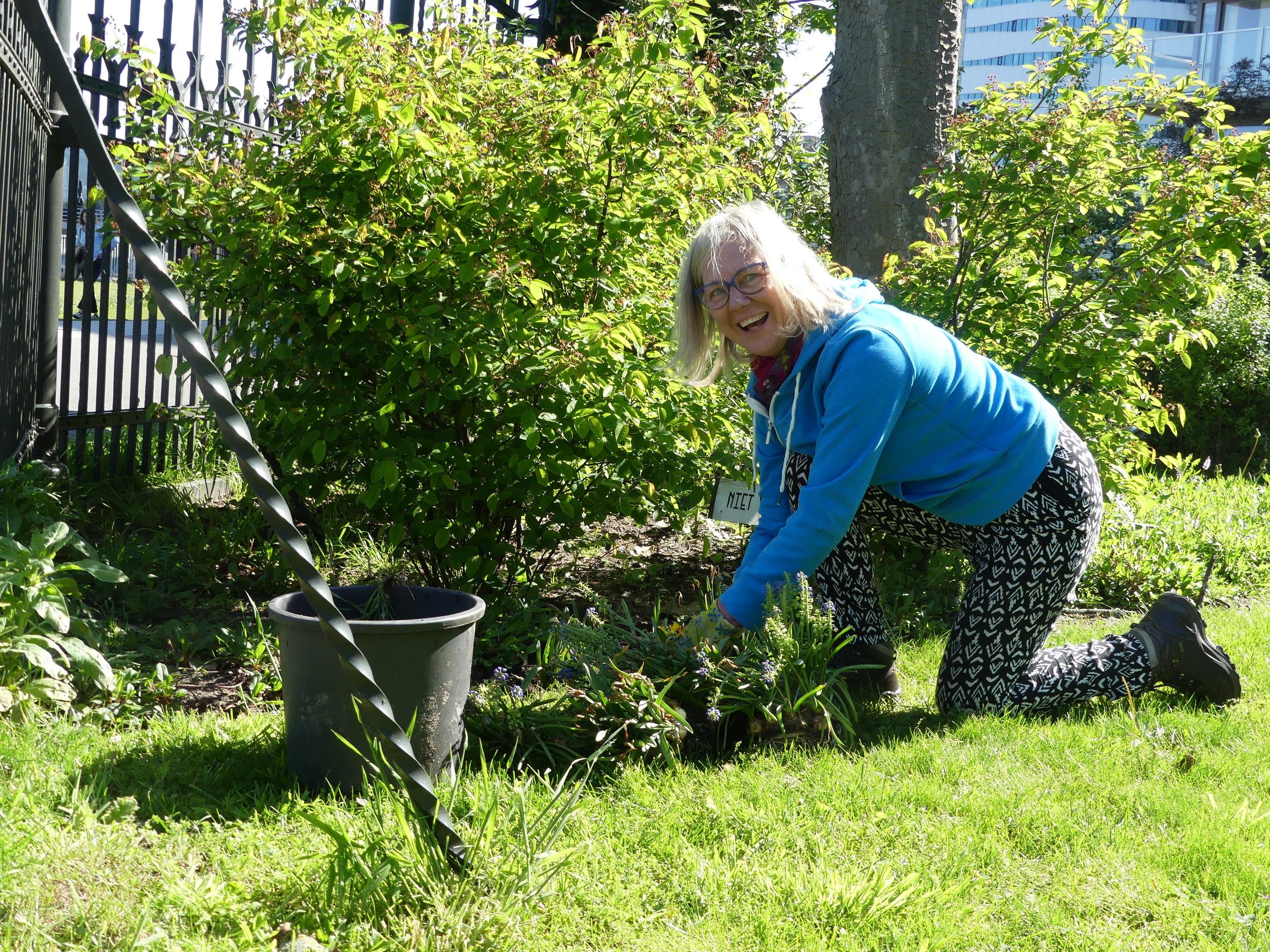 - Zaterdag 2 juni duiken we weer de tuin in! Heb jij groene vingers en lijkt het je leuk elke eerste zaterdag van de maand t/m mei te helpen met tuinieren in onze tuin? Meld je dan aan via info@thuisaandeamstel.nl of kom op de dag zelf gezellig aanwaaien.Onder leiding van Tjalf onze tuinman leer je hoe je moet snoeien en een tuin zomerklaar moet maken. Je wordt ontvangen met een heerlijke kop koffie en uiteraard zorgen we ook voor een goede lunch. We zullen een half dagje bezig zijn van 9:30 tot 14:00, als je een paar uurtjes daarvan kunt is die hulp ook welkom!Super leuk als je ons komt helpen!