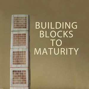 Building-Blocks-To-Maturity-1200.png