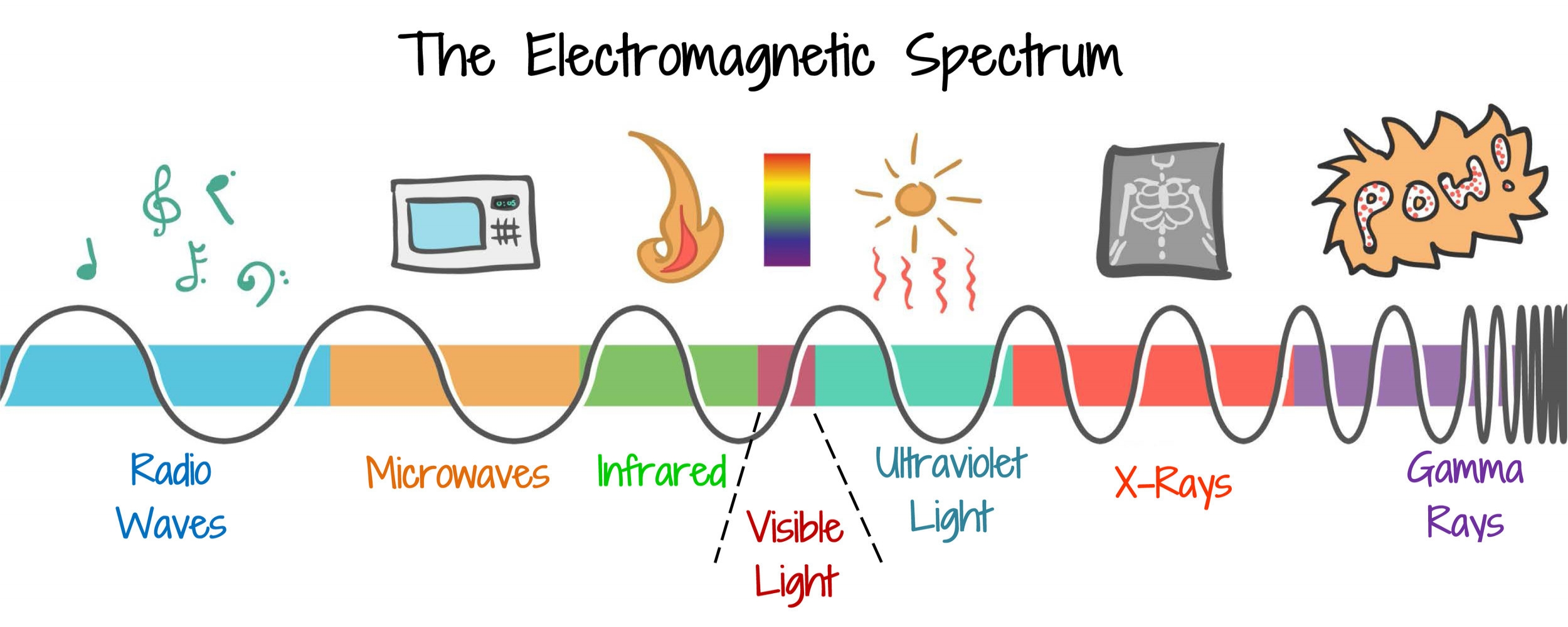 The Electromagnetic Spectrum.jpg