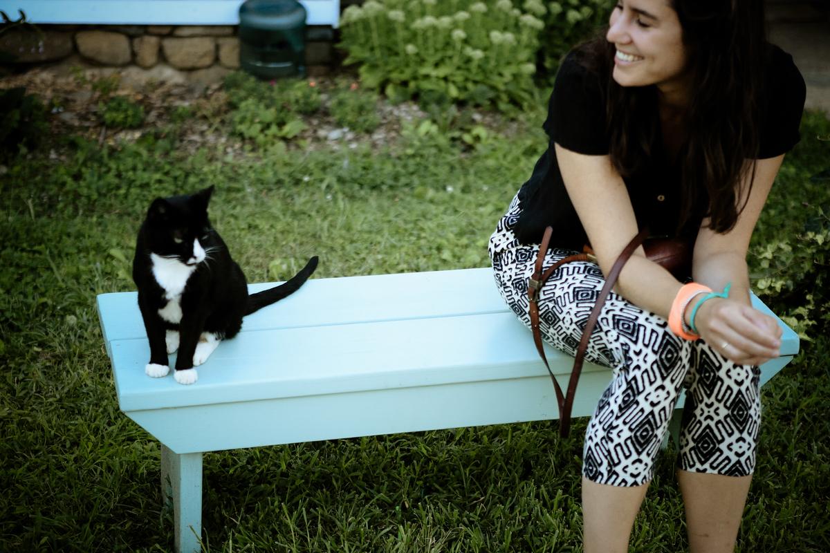 Tangra Summer, Cat