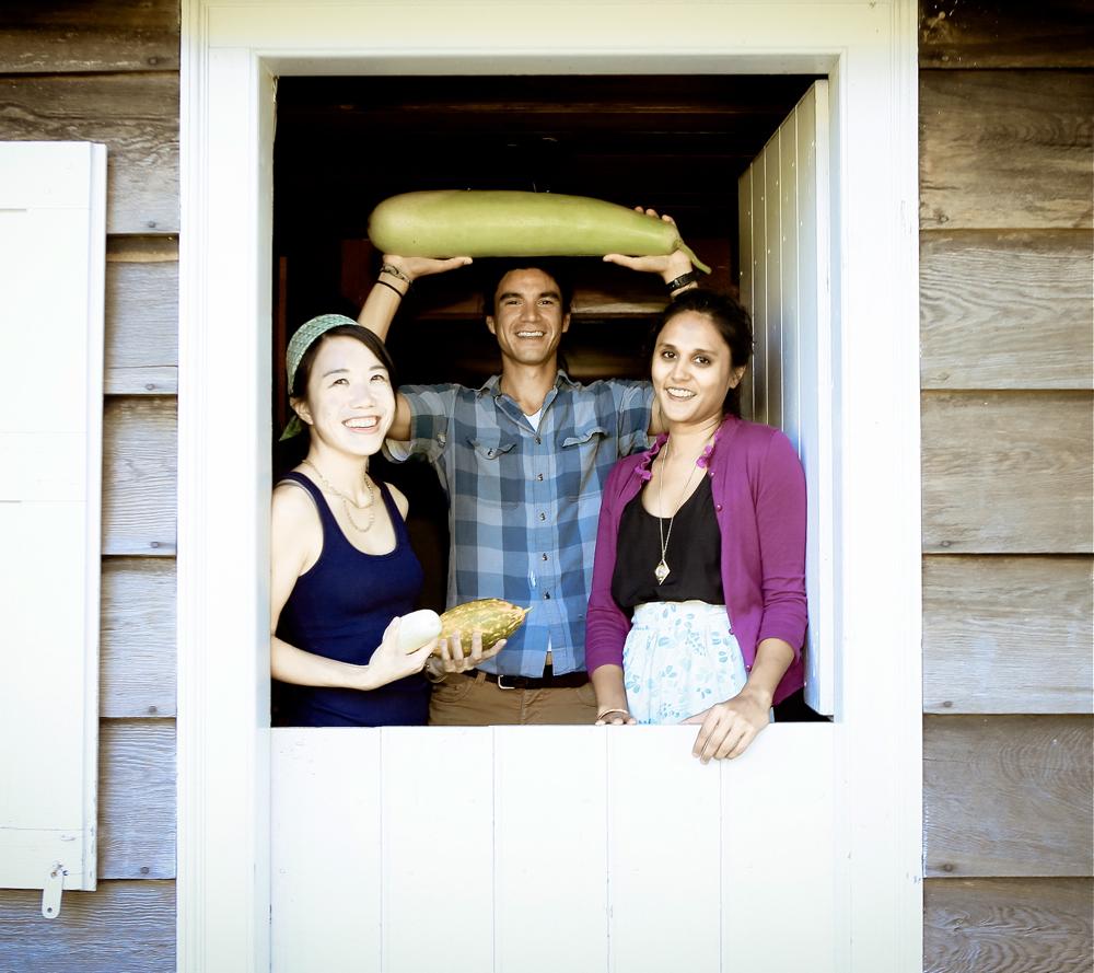 Tangra Summer Wyckoff Farmhouse