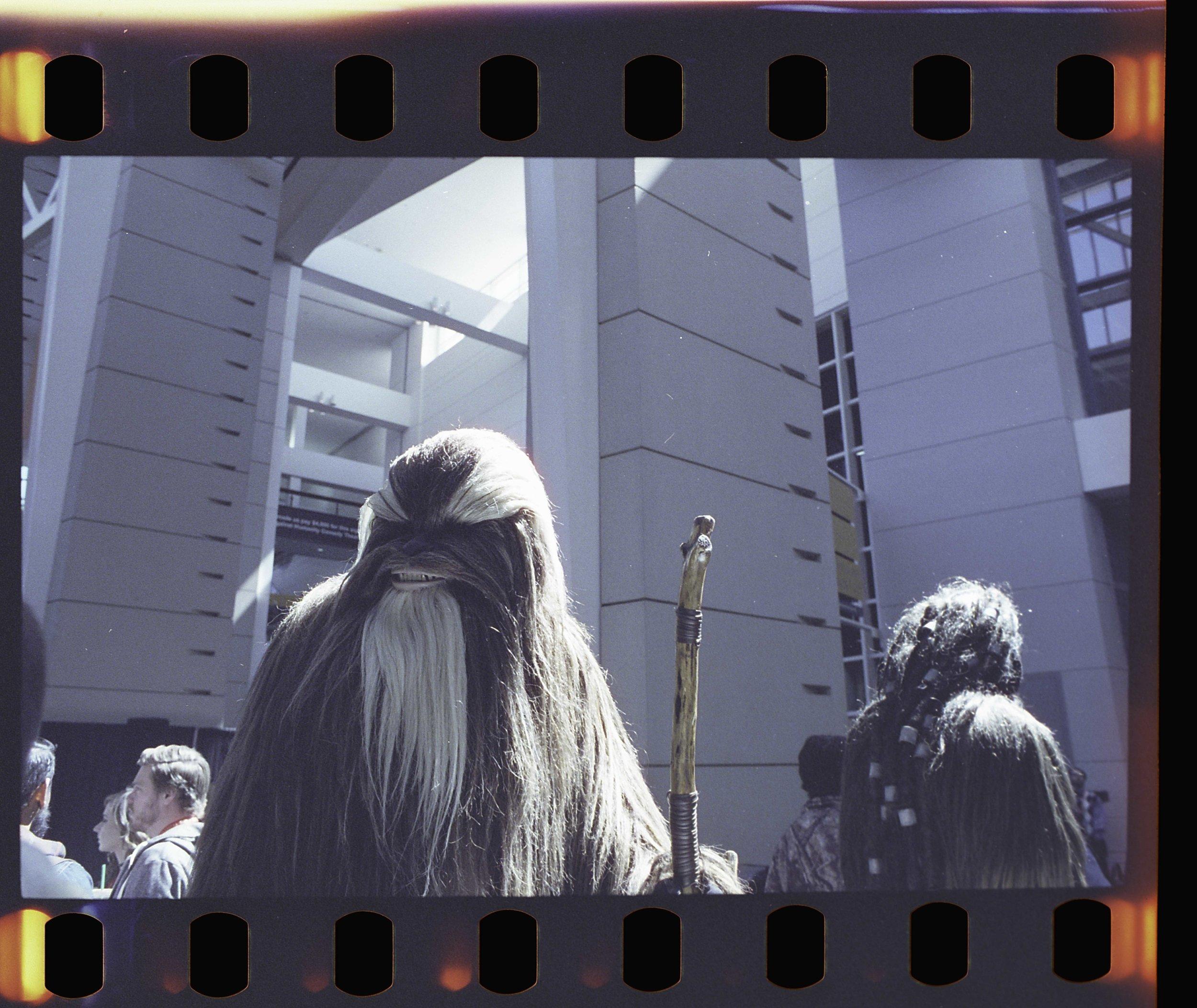 NikonFE2_c2e2_Cinestill800031.jpg