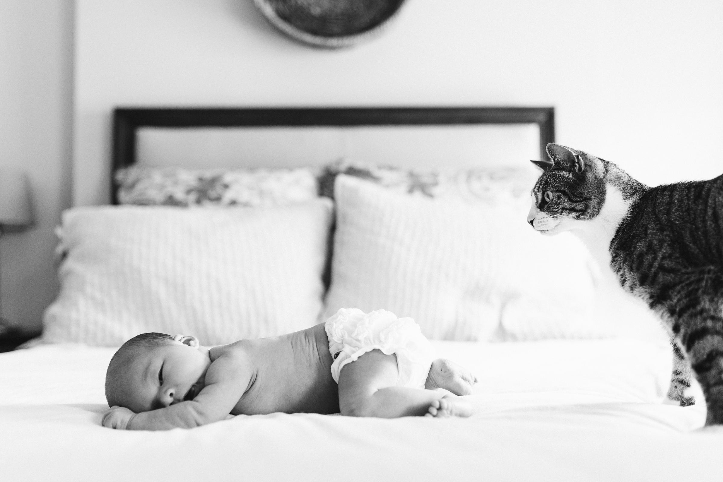 brooklyn-newborn-photographer-6.jpg