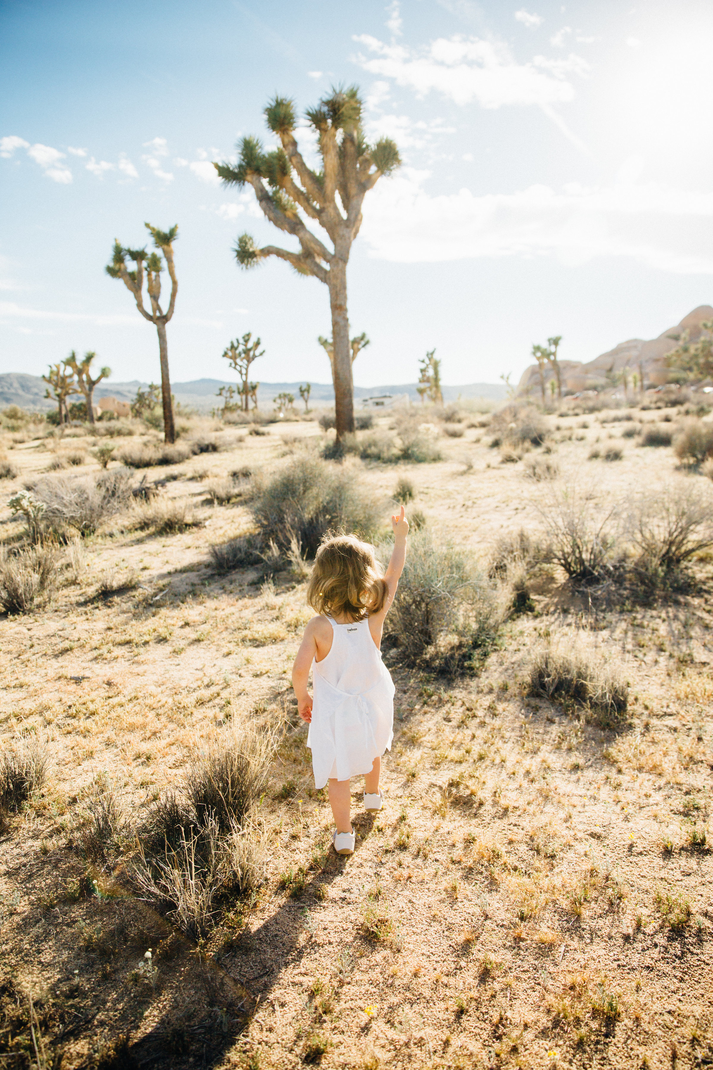 joshua-tree_california_family-session_nicki-sebastian-photography-47.jpg