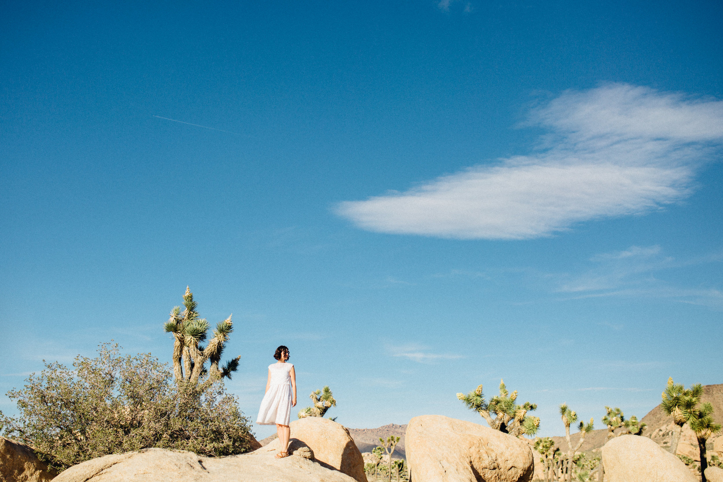 joshua-tree_california_family-session_nicki-sebastian-photography-69.jpg