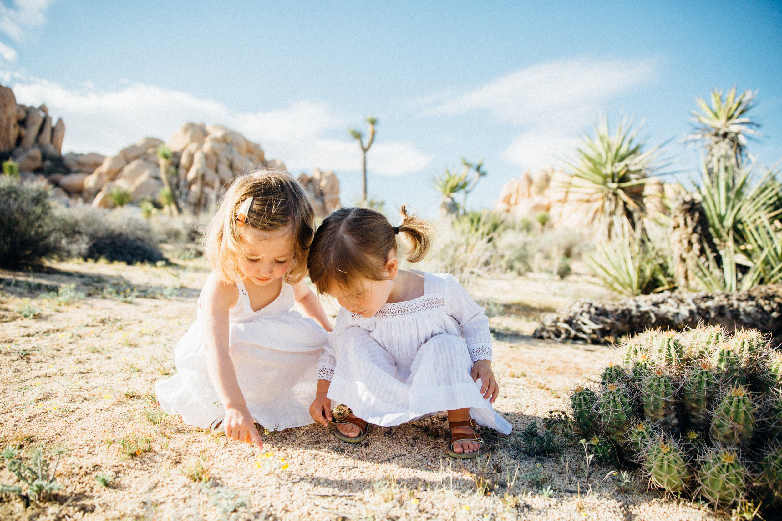 joshua-tree_california_family-session_nicki-sebastian-photography-32.jpg
