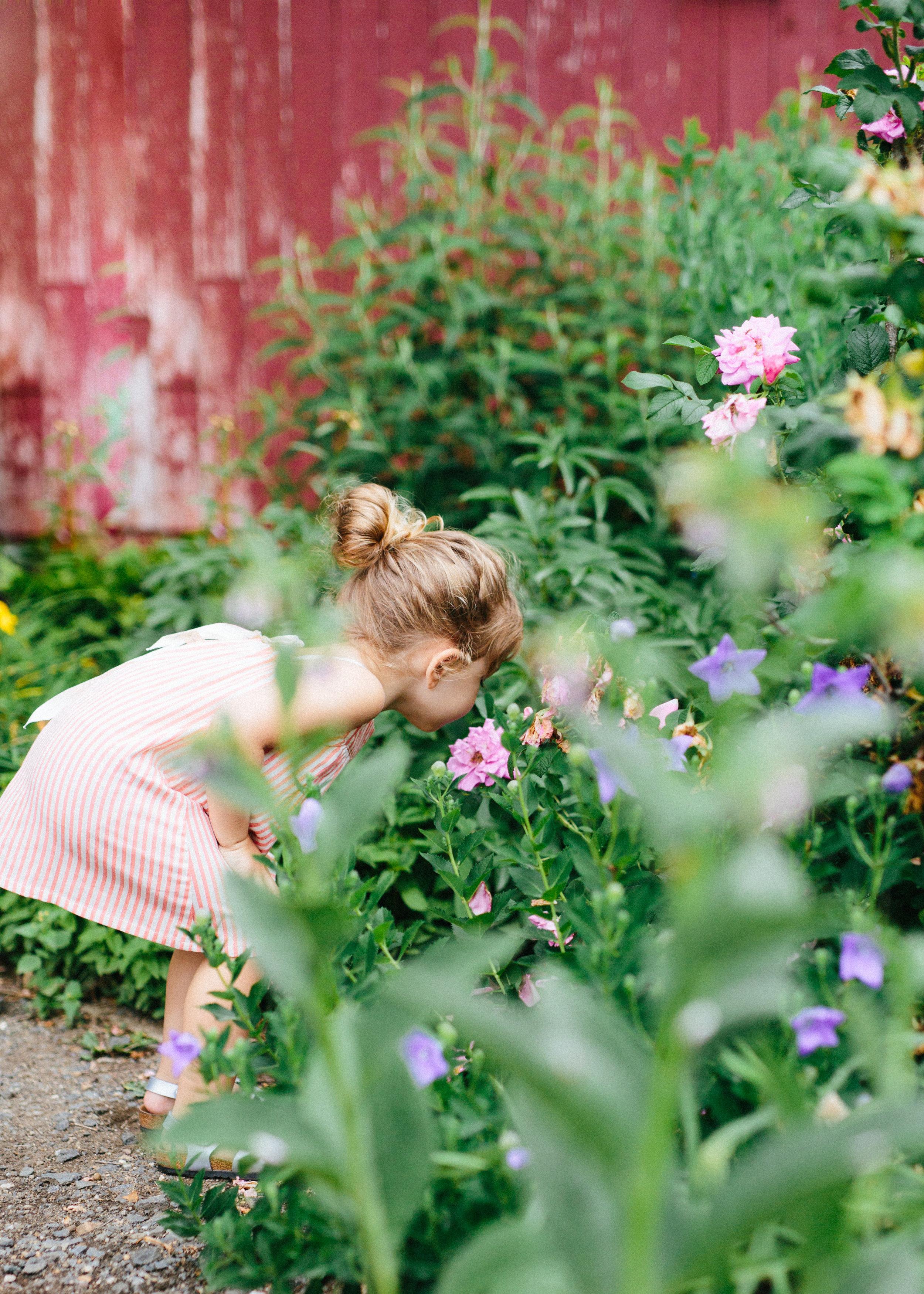 cami_muscoot-farm_westchester_new-york_child-photographer-6.jpg