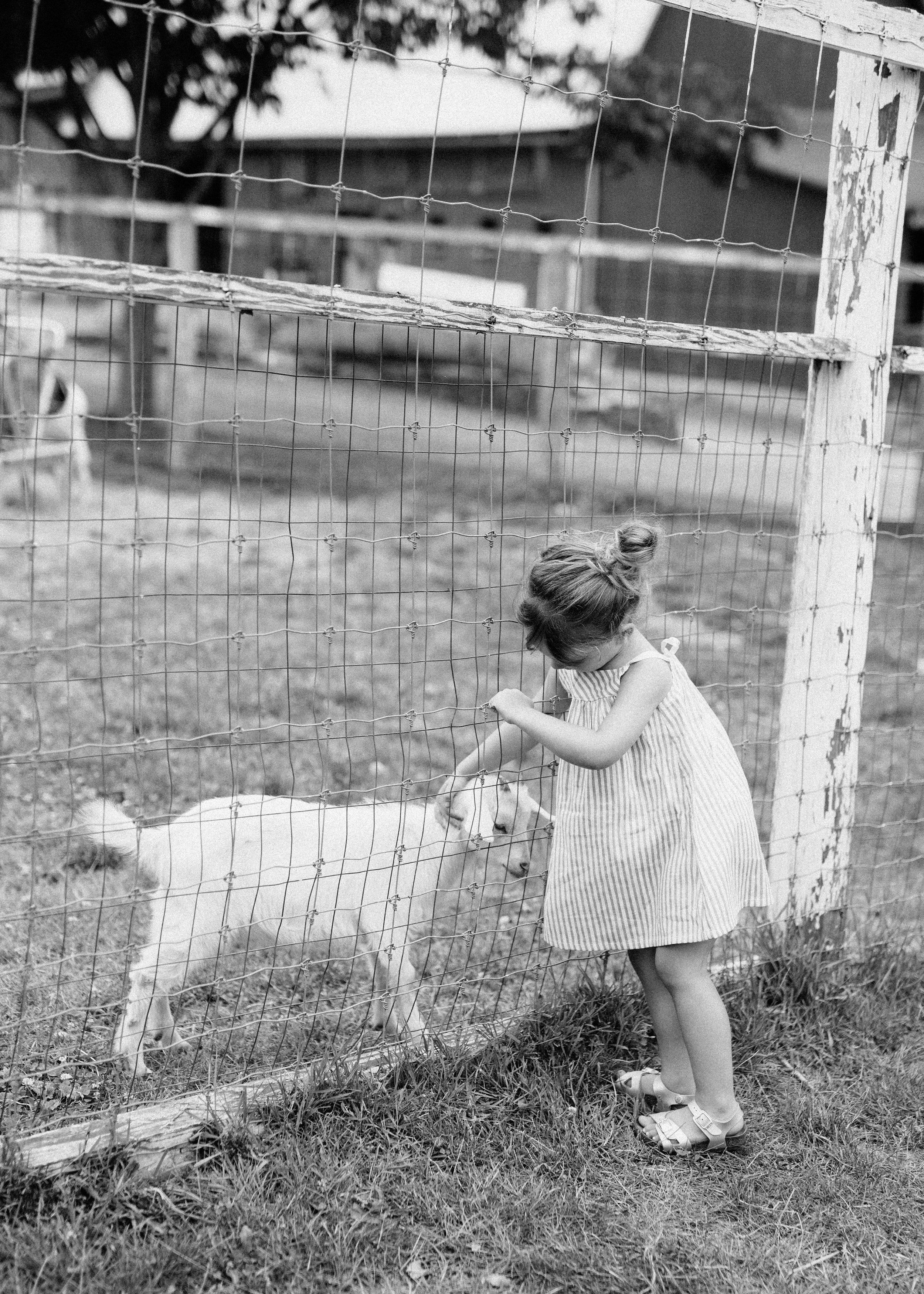 cami_muscoot-farm_westchester_new-york_child-photographer-16.jpg