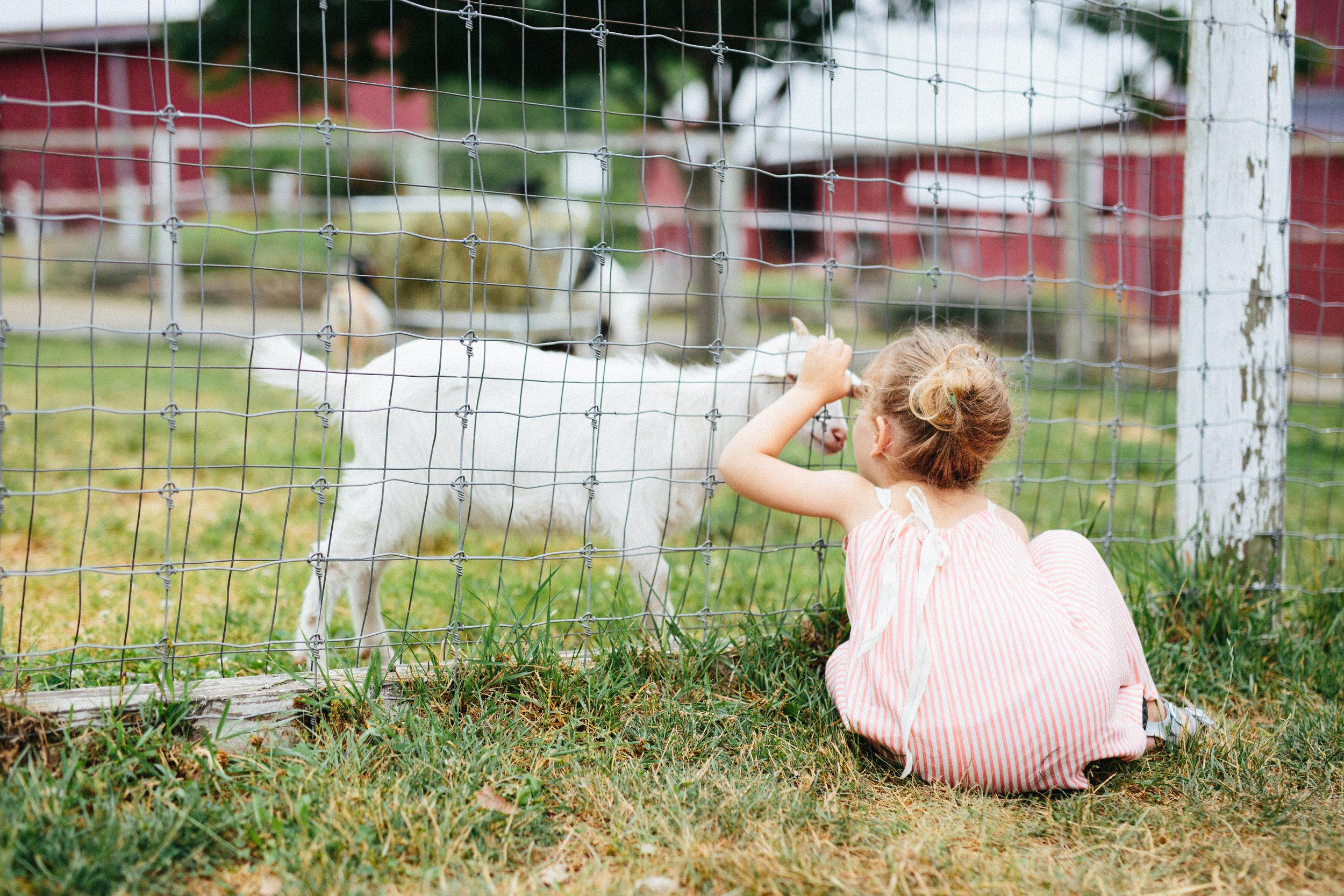 cami_muscoot-farm_westchester_new-york_child-photographer-17.jpg