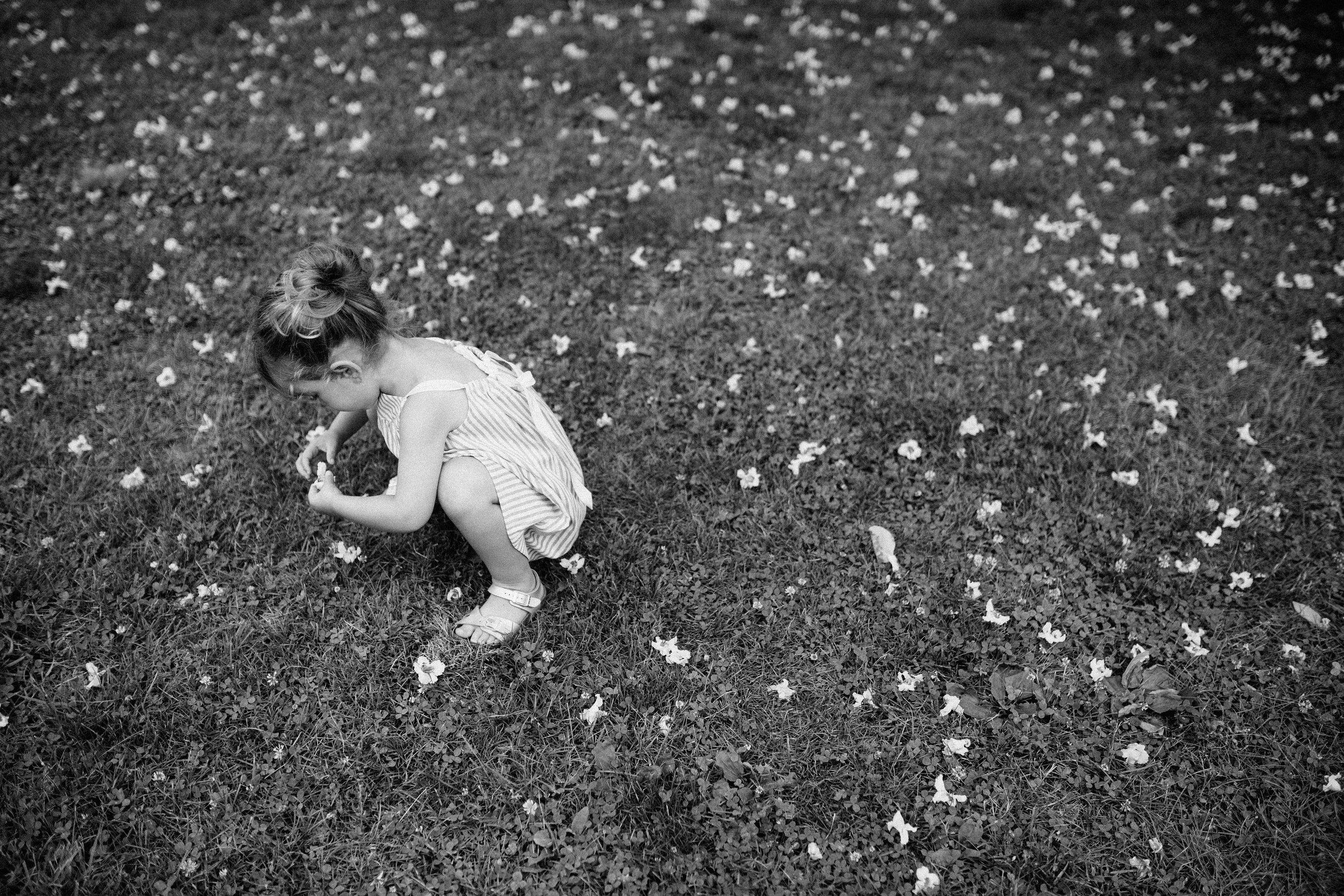 cami_muscoot-farm_westchester_new-york_child-photographer-31.jpg