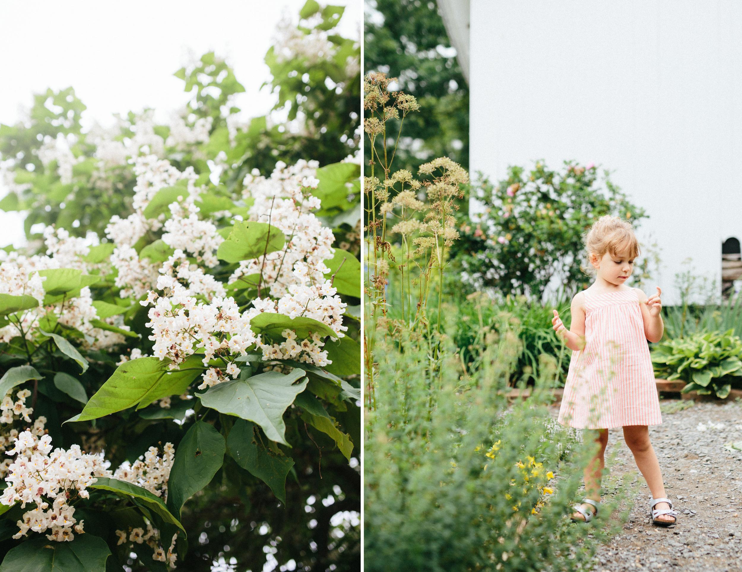 muscoot-farm-les-petits-carreaux_cami-westchester-ny-family-photographer-2.jpg