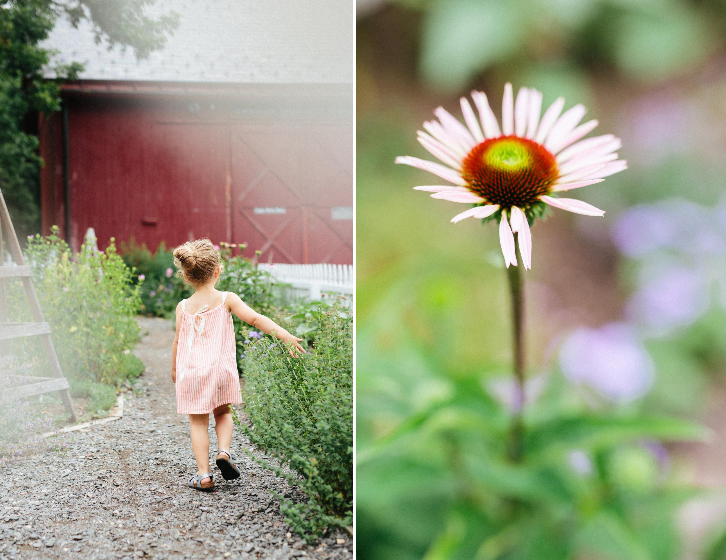 muscoot-farm-les-petits-carreaux_cami-westchester-ny-family-photographer.jpg