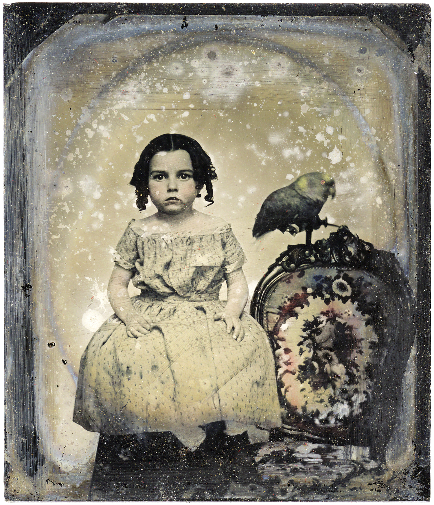 Little Girl and Parrot, 2011 - LR4768