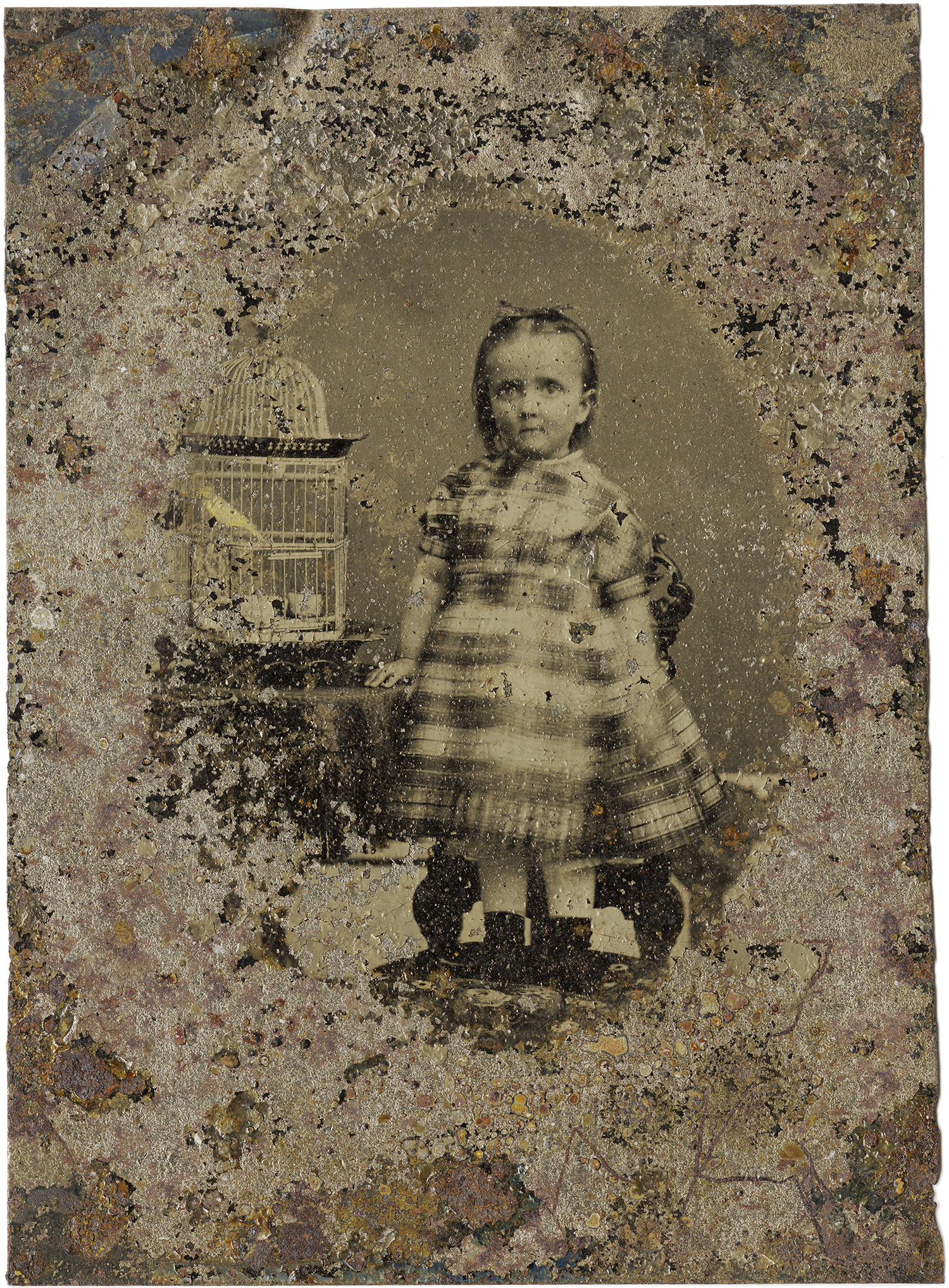 Little Girl with Birdcage, 2011 - LR12123