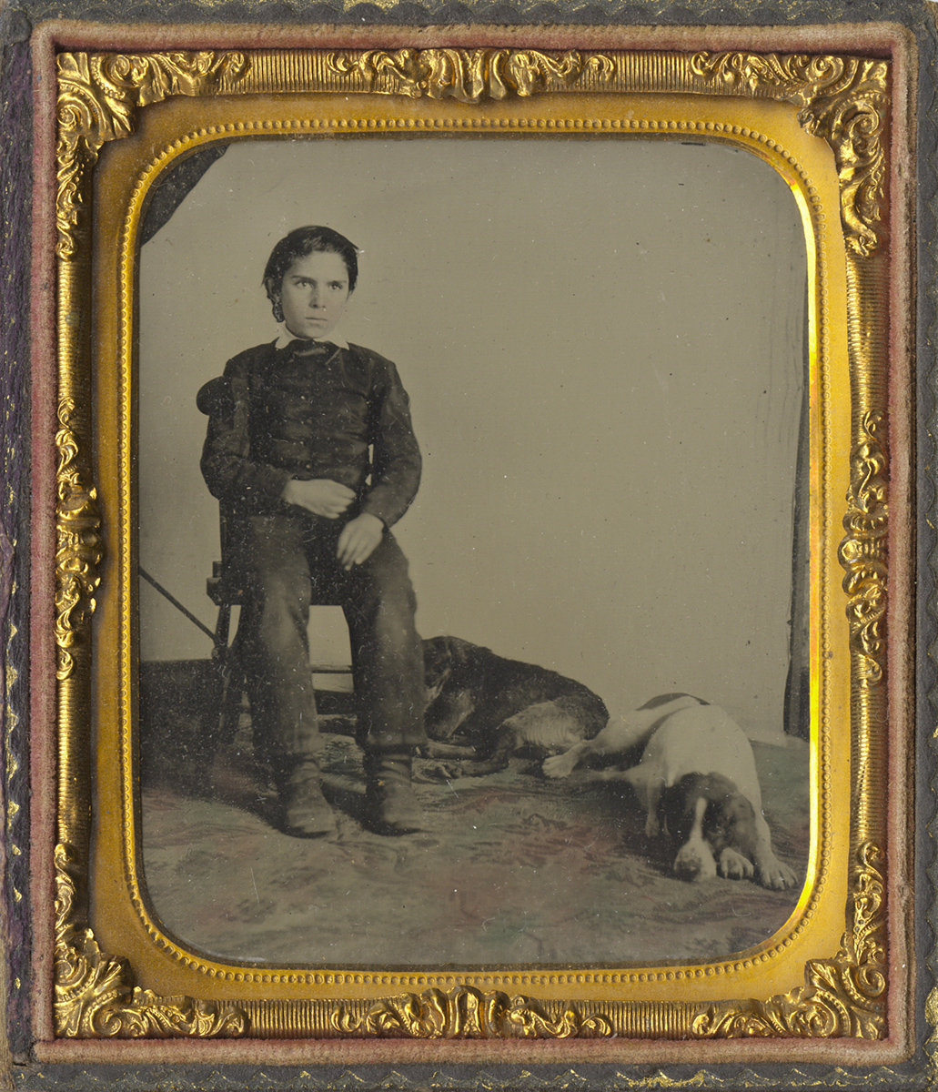 Portrait of a Seated Boy with Two Dogs Lying at His Feet