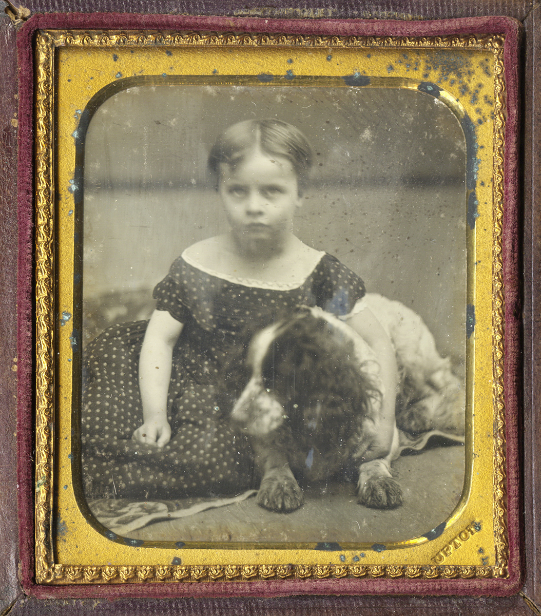 Little Girl Seated with One Arm Across Her Springer Spaniel's Back