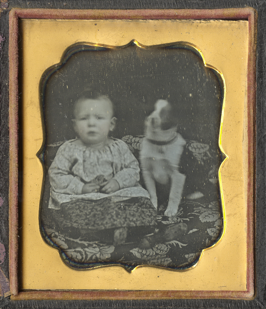 Portrait of a Child and a Blurred Dog