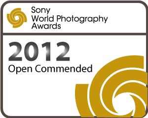 Commended - Sony Awards.jpg