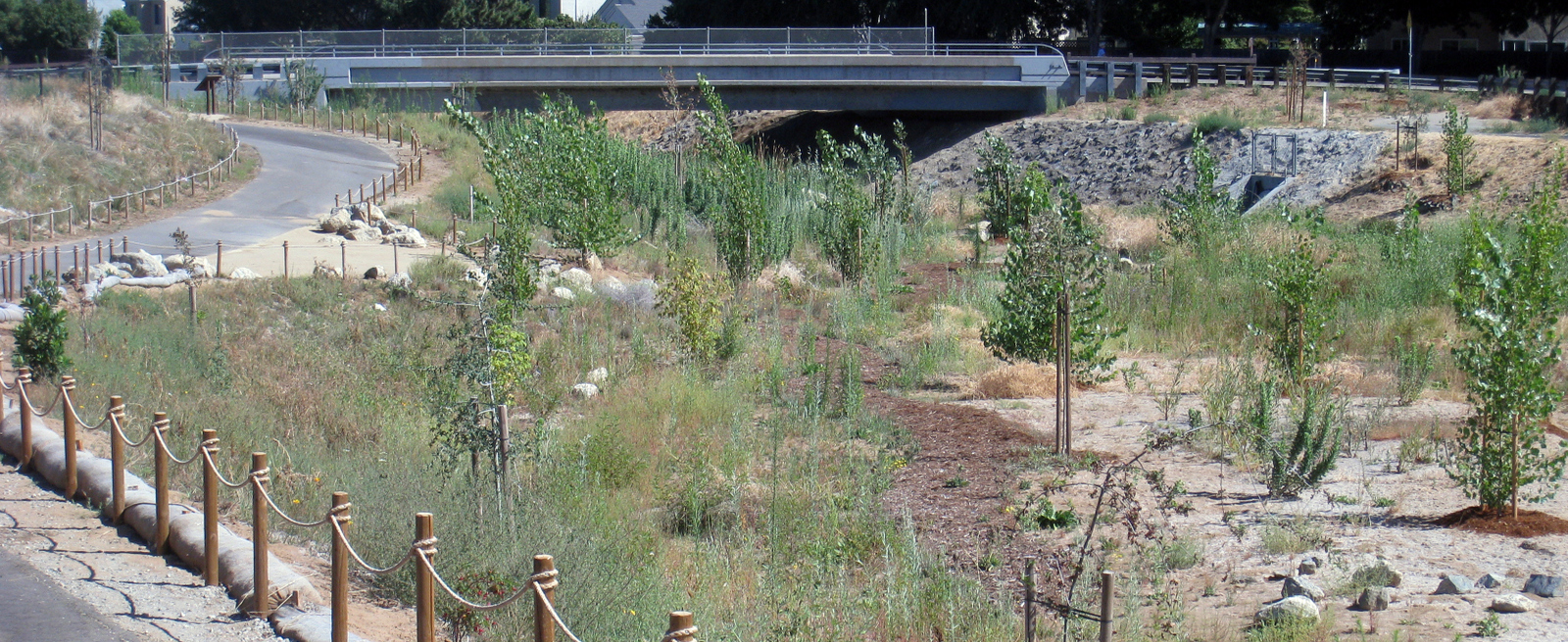 Marsh Creek Restoration, City of Oakley