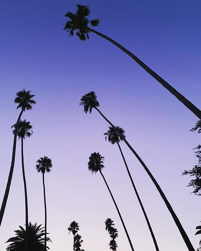 Went on a run last night in the hood. Never gets old. #losangeles