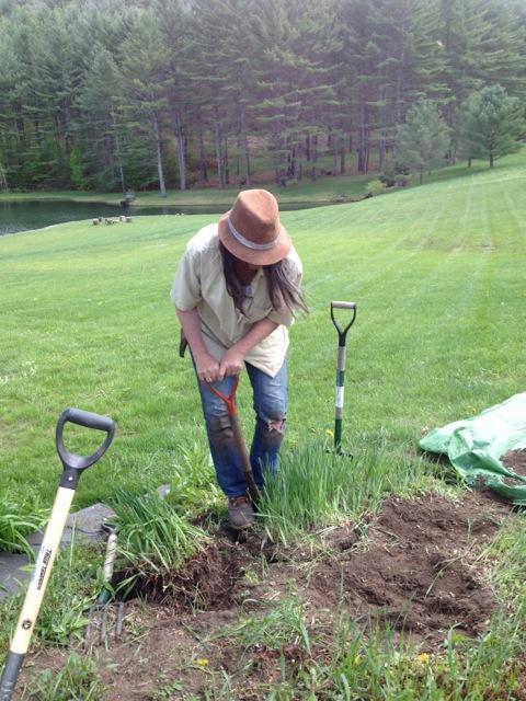 hat & shovel.jpg