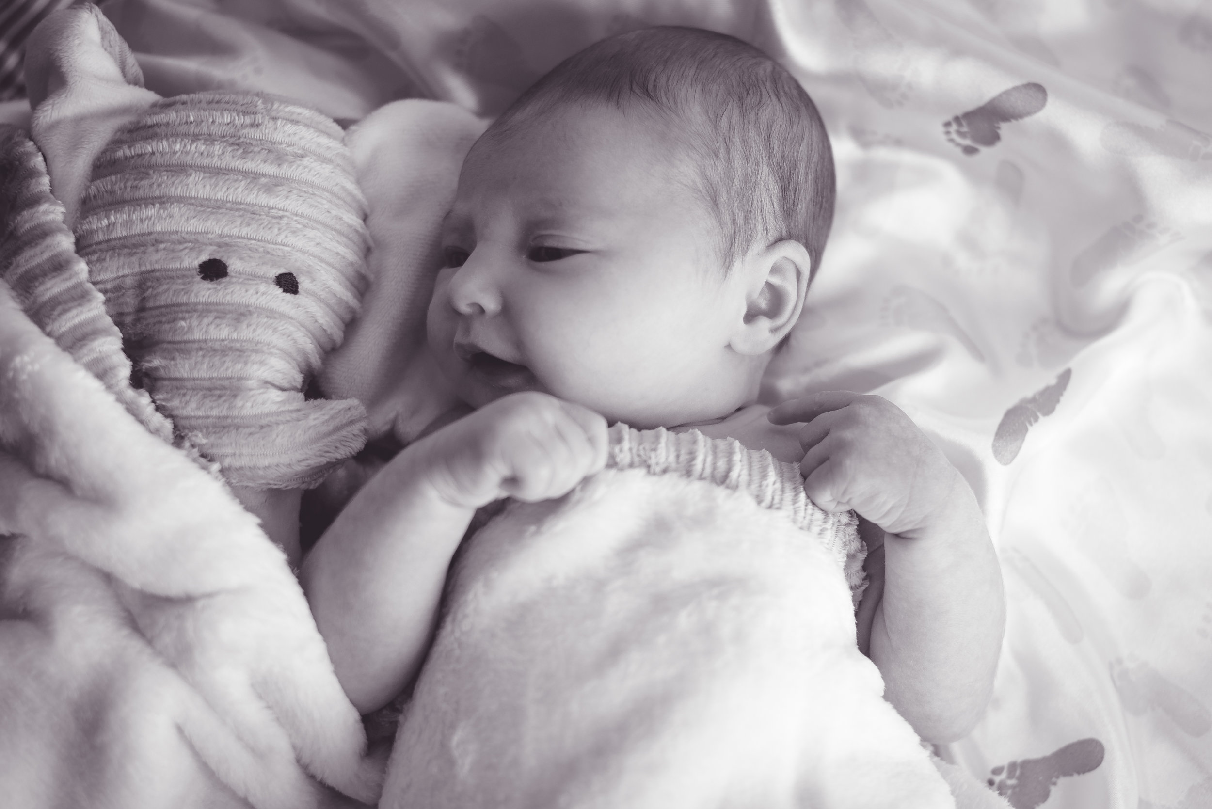 Friends | Robin's Nest | Babies First Year Photography