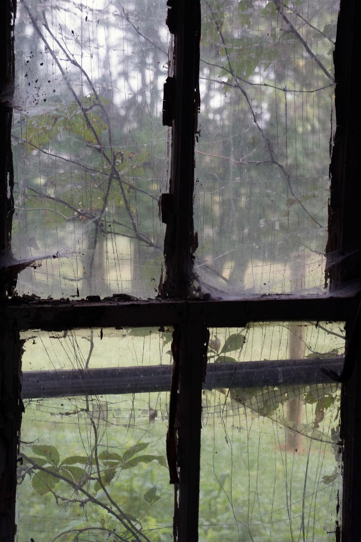 Oak Grove window.jpg