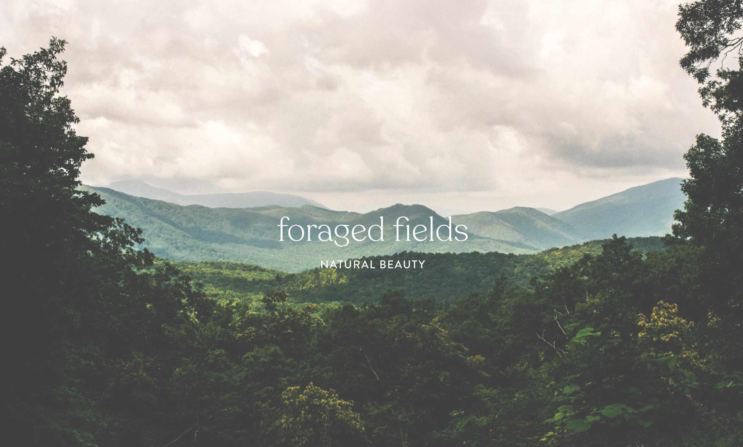 Foraged Fields Cover Image.jpg