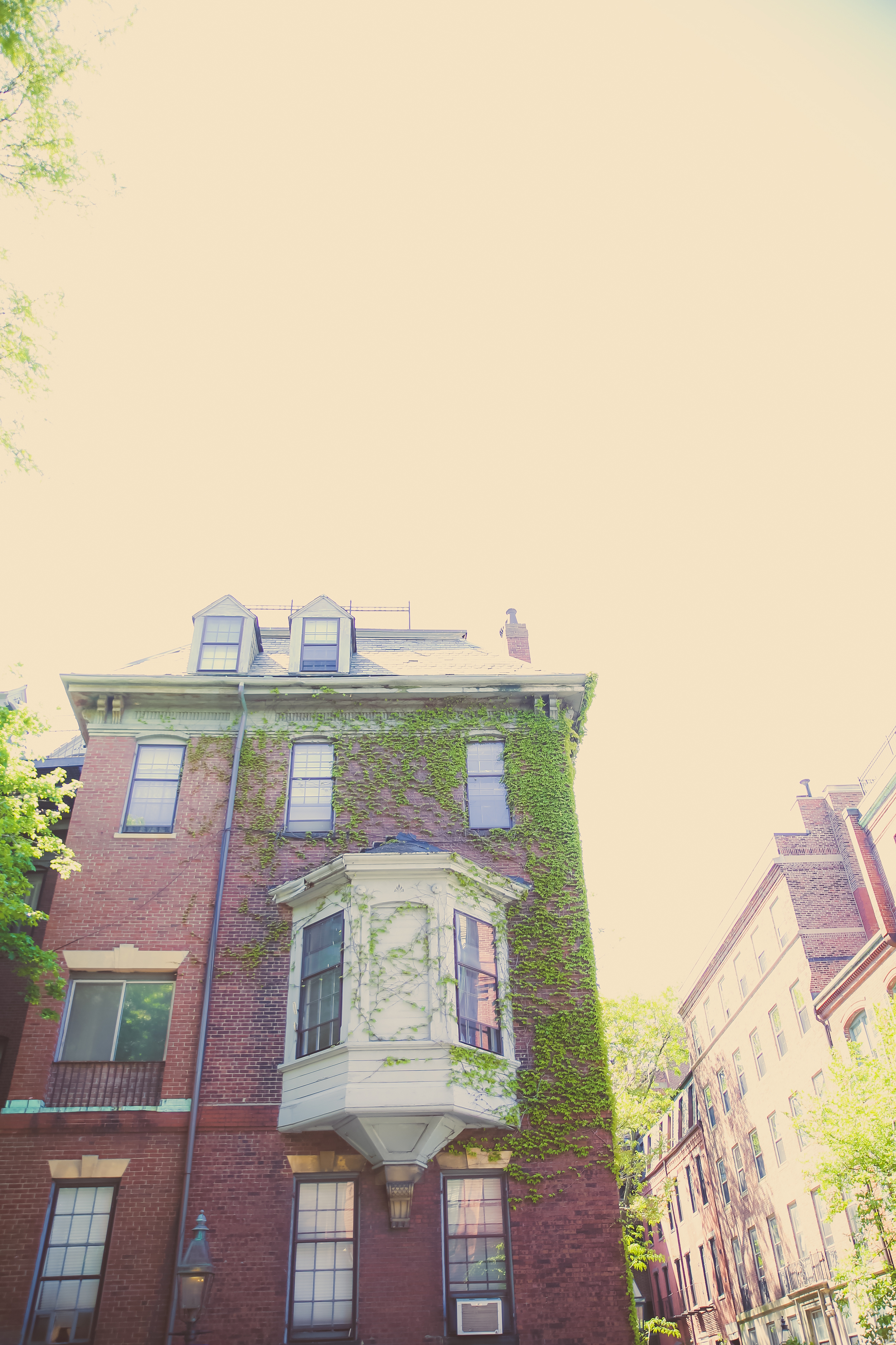 boston-8.jpg