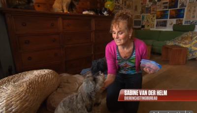 Sabine in Hart van Nederland:  http://www.hartvannederland.nl/nederland/2013/fikkie-kan-een-bner-worden/