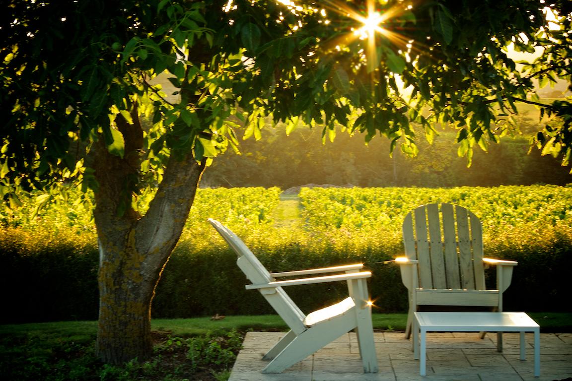sunset terrace.jpg