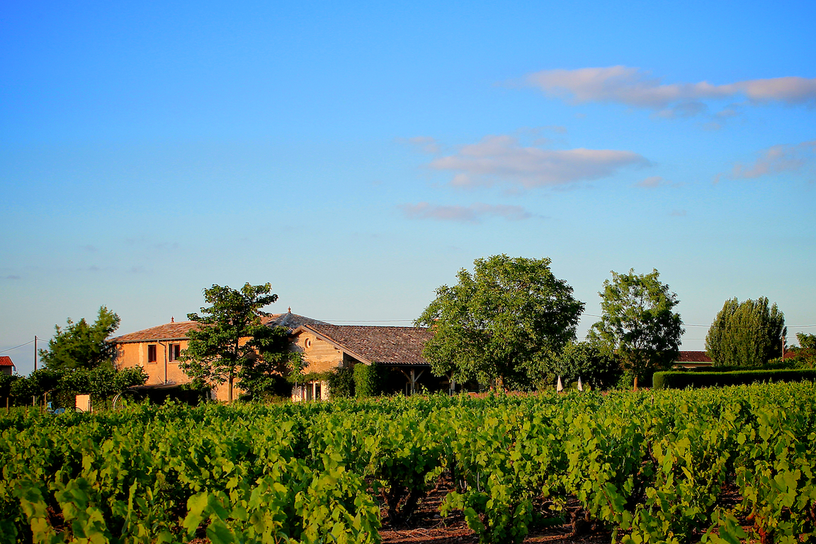 Domaine Les Quatre Terres gezien vanuit de wijngaarden.