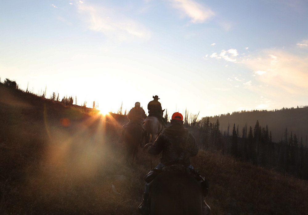 elk hunting sunset wolverine creek
