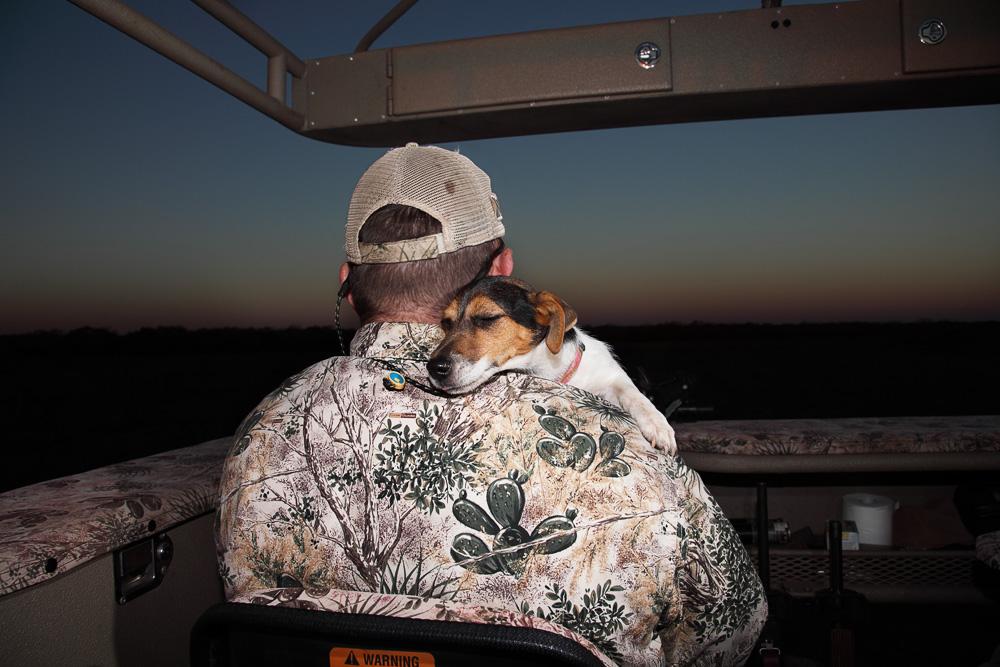 texas puppy love