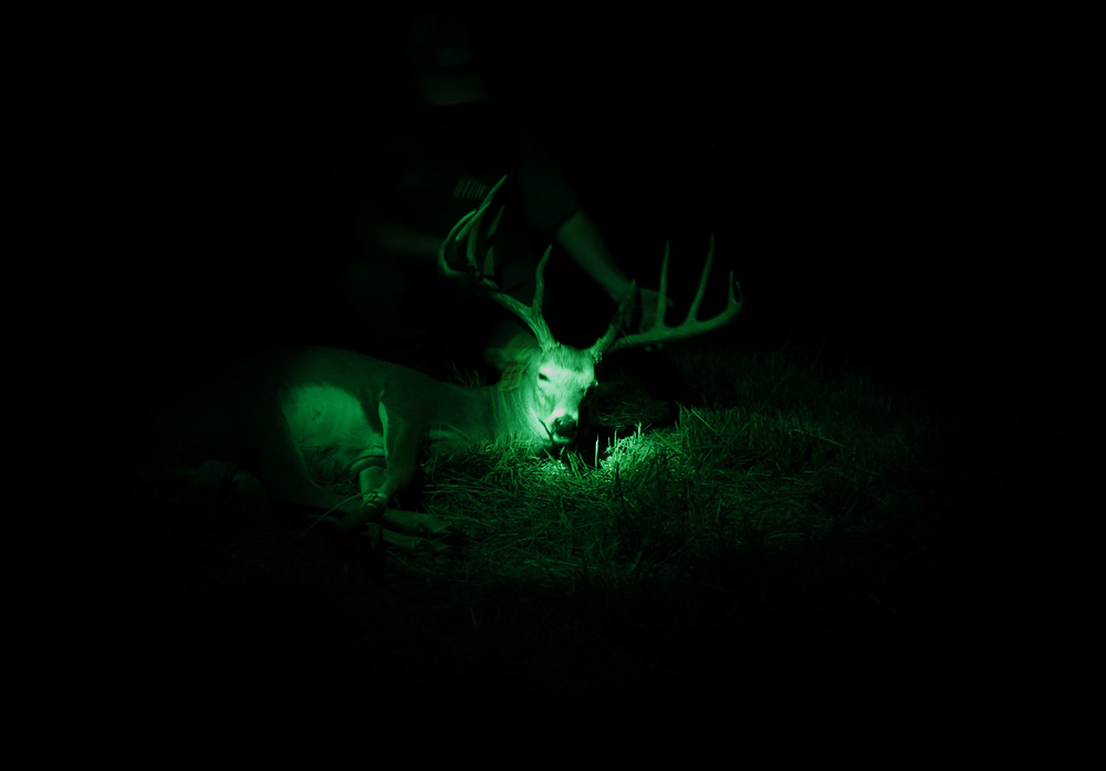 big buck at night texas deer hunt