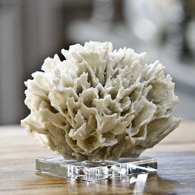 White Ribbon Coral on Crystal Base.jpg