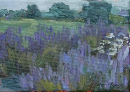 Local Lavender farm.jpg