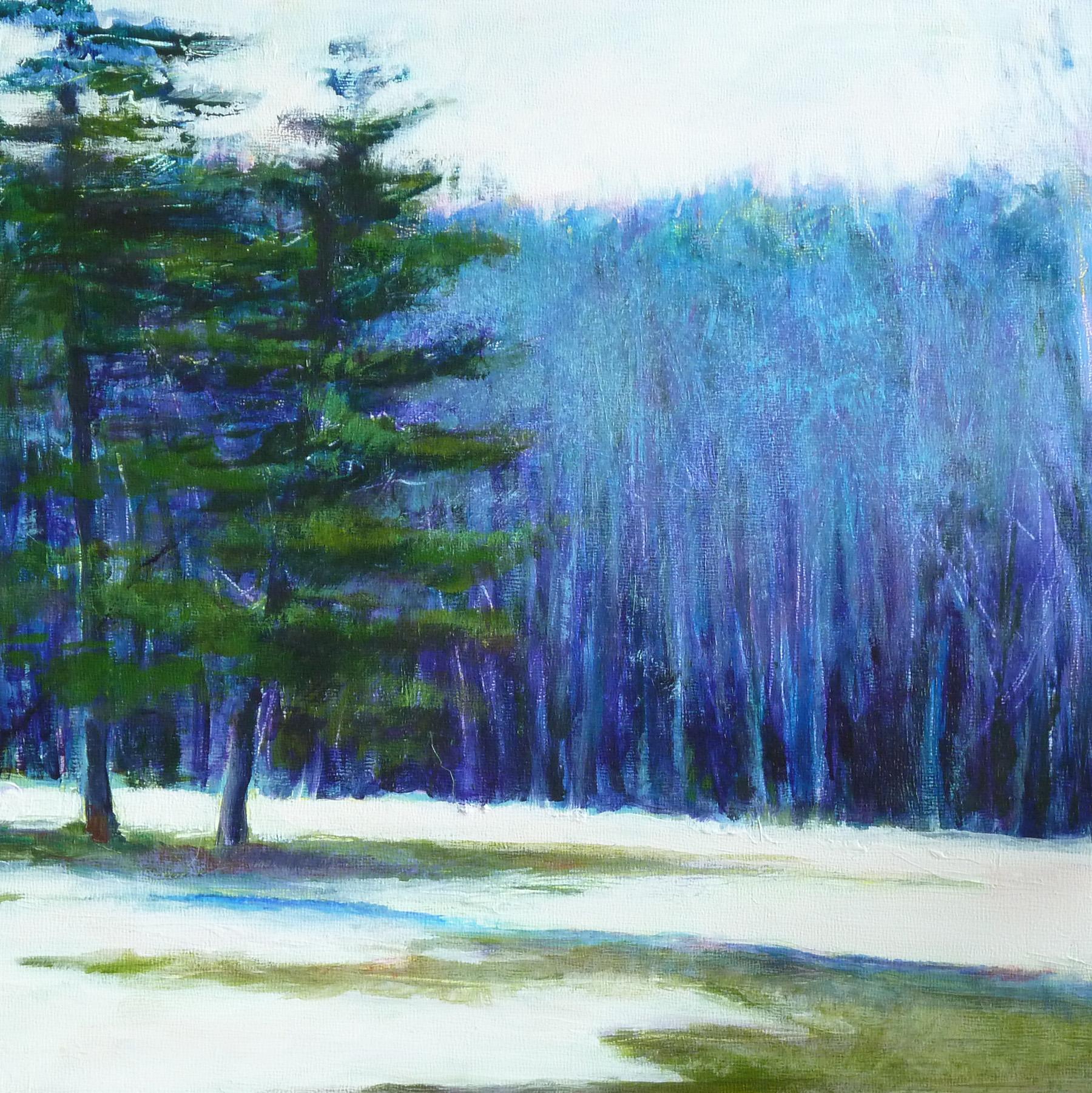 Litchfield Woods