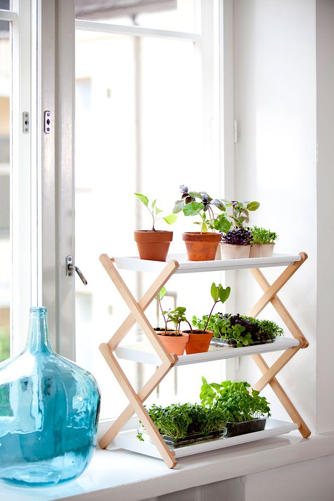 Source: visit    http://www.missmoss.co.za/2013/05/02/kekkila/    for more ideas on how to grow herbs and plants in a small indoor space