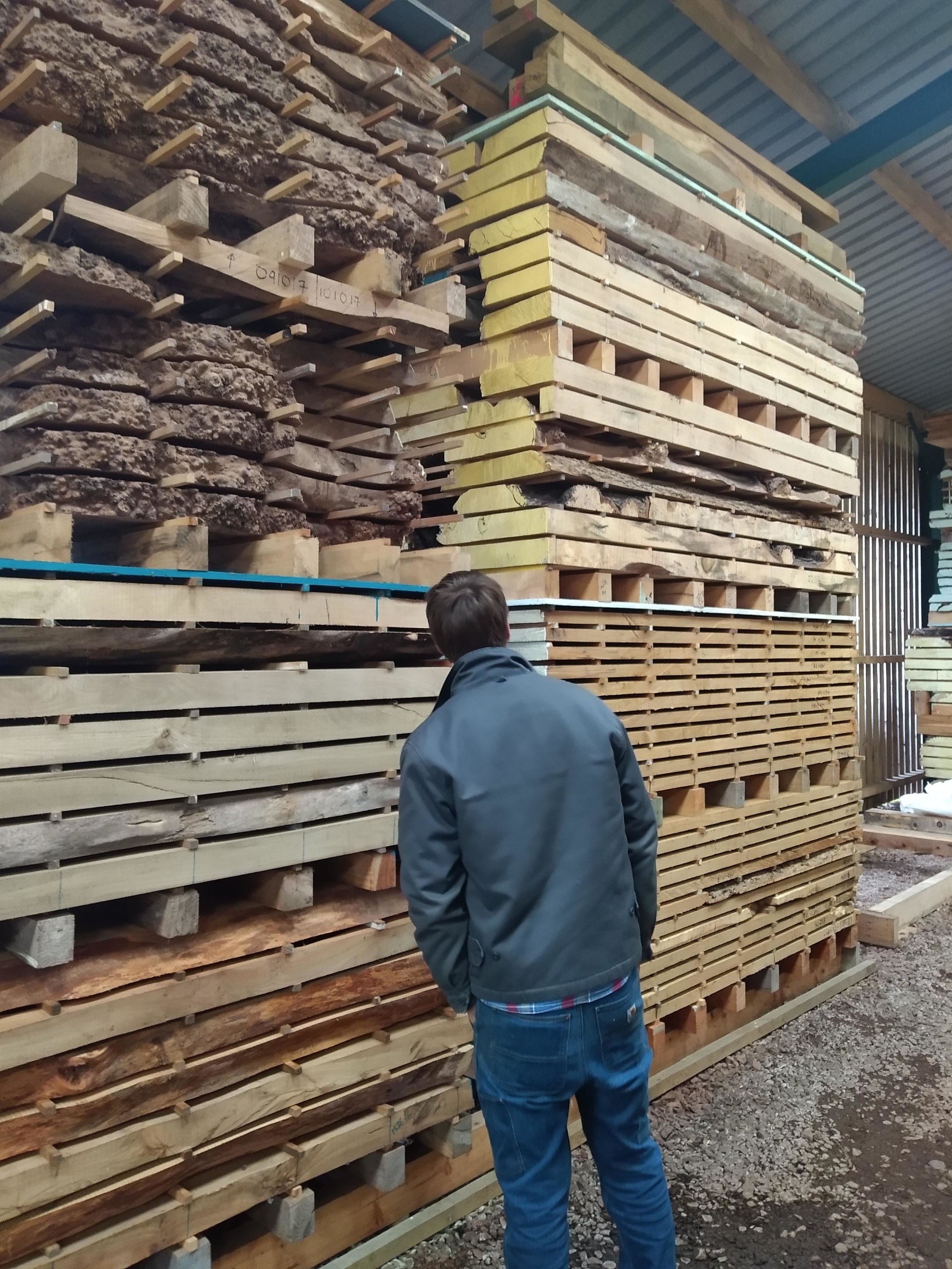 Scottish furniture designer maker Namon Gaston selecting timber for bespoke commission design