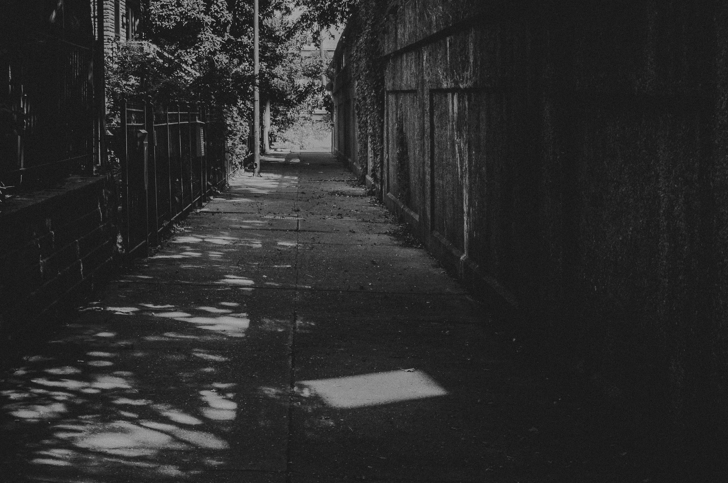 summertime alley way black and white chicago, IL