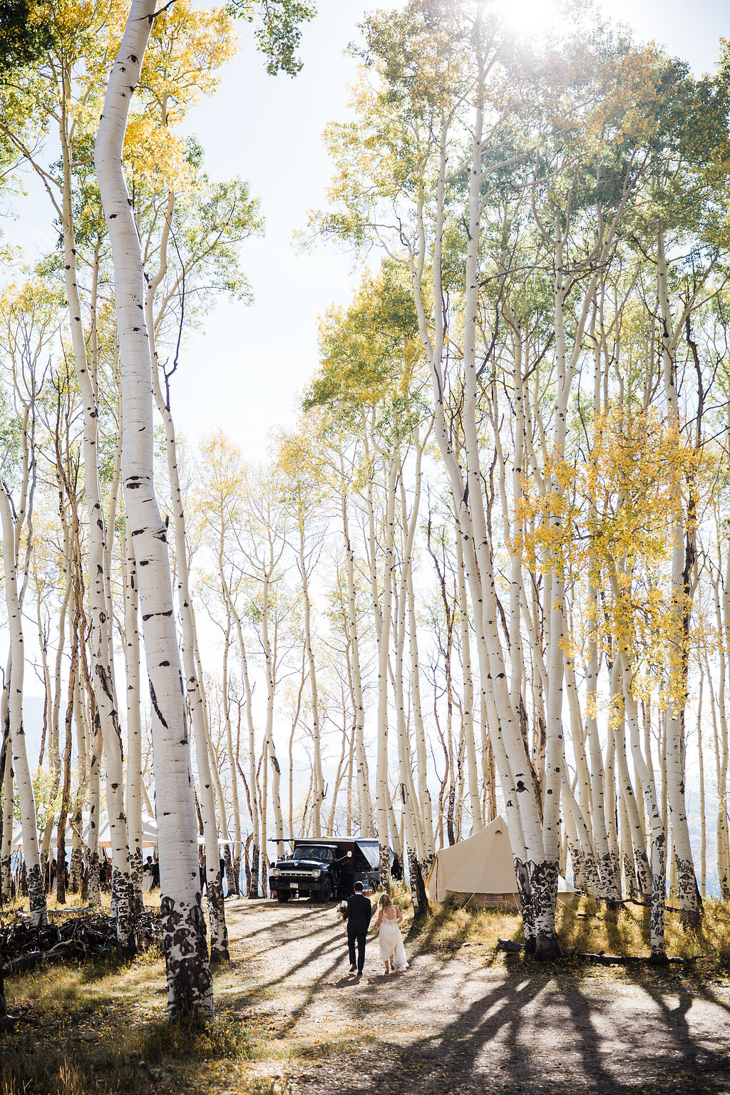 Allred's Restaurant Telluride Wedding Aspen trees
