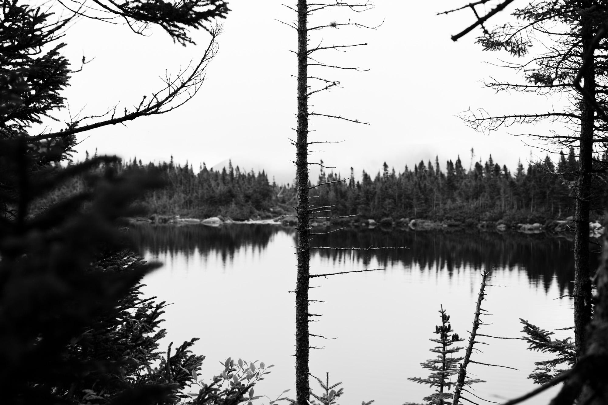 140814_Maine-0166.jpg