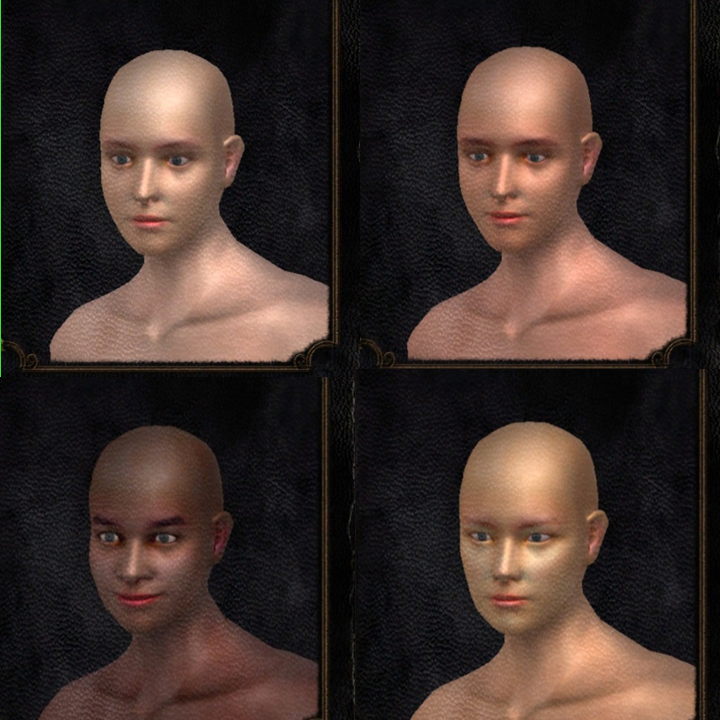 "Top row, from left to right: [White] ""Commoner: Very average commoner face."" [Latina/o] ""Delta Farmer: Commonly seen face in the FiveFinger Delta."" Bottom row, from left to right: [Black] ""Jubilant Catarina: Jovial features of Catarina, known for festivity and drink."" [East Asian] ""Far East Traveler: Face from a distant Eastern land of almond skin and think lips."" Personal screenshot from  Dark Souls , by FromSoftware, 2011."