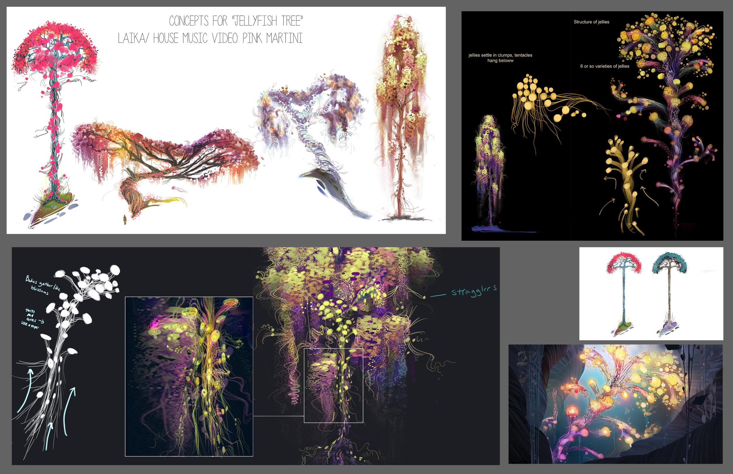 kelp4.jpg